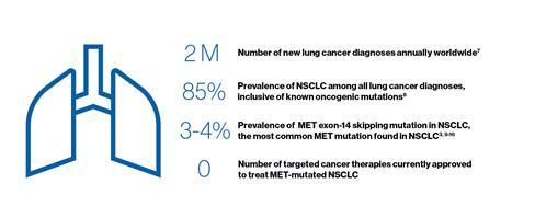 Novartis investigational lung cancer therapy capmatinib