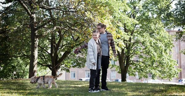 Kuva, joka sisältää kohteen puu, ulko, ruoho, puisto  Kuvaus luotu automaattisesti