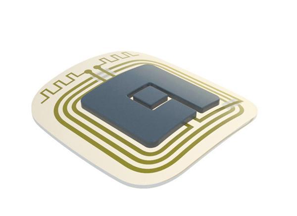 ELSAH patch integrated300dpi